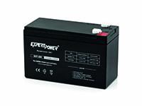 ExpertPower 12V 9Ah para UPS APC 650VA y 750VA.